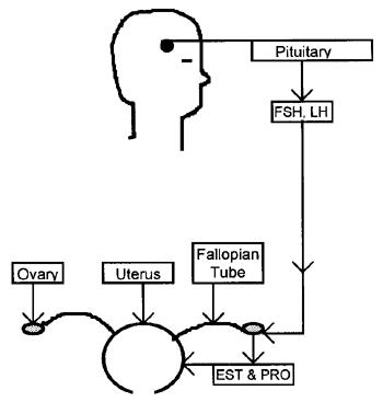 misoprostol need perscription alabama